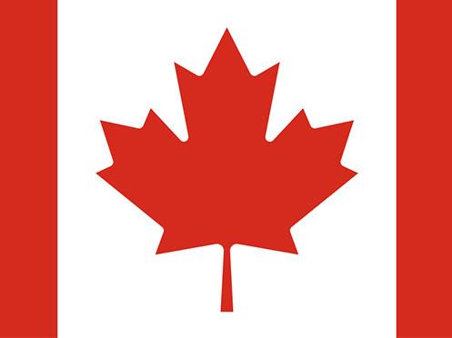Envoyez vos colis au Canada avec CAP Express
